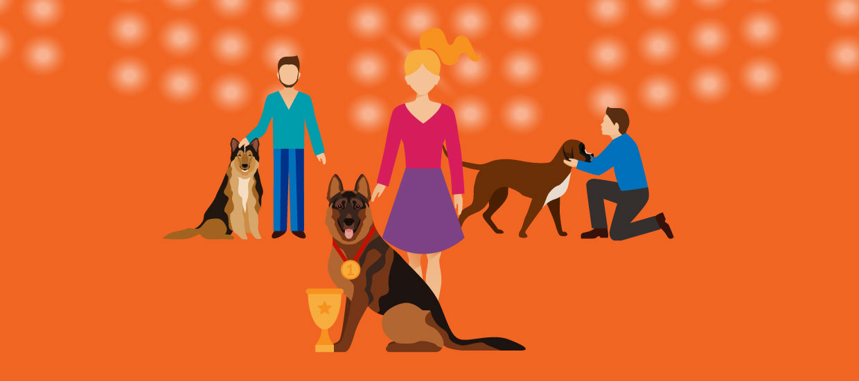 Step-by-step guide to running a pet show